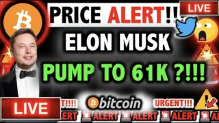 ELON MUSK PUMPING BITCOIN & ETHEREUM TO NEW HIGHS?! ⚠️Crypto Today BTC Cryptocurrency Price News Now