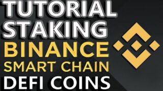 STEP By STEP Guide | How To Stake BSC Defi Coins! EXTREME PASSIVE INCOME | ApeSwap – Goose – Pancake